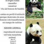 poster panda